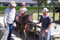 干拓の里ではポニー乗馬をメインに、小動物の管理・厩舎の管理・環境整備などを行なっています。