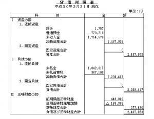 平成29貸借対照表
